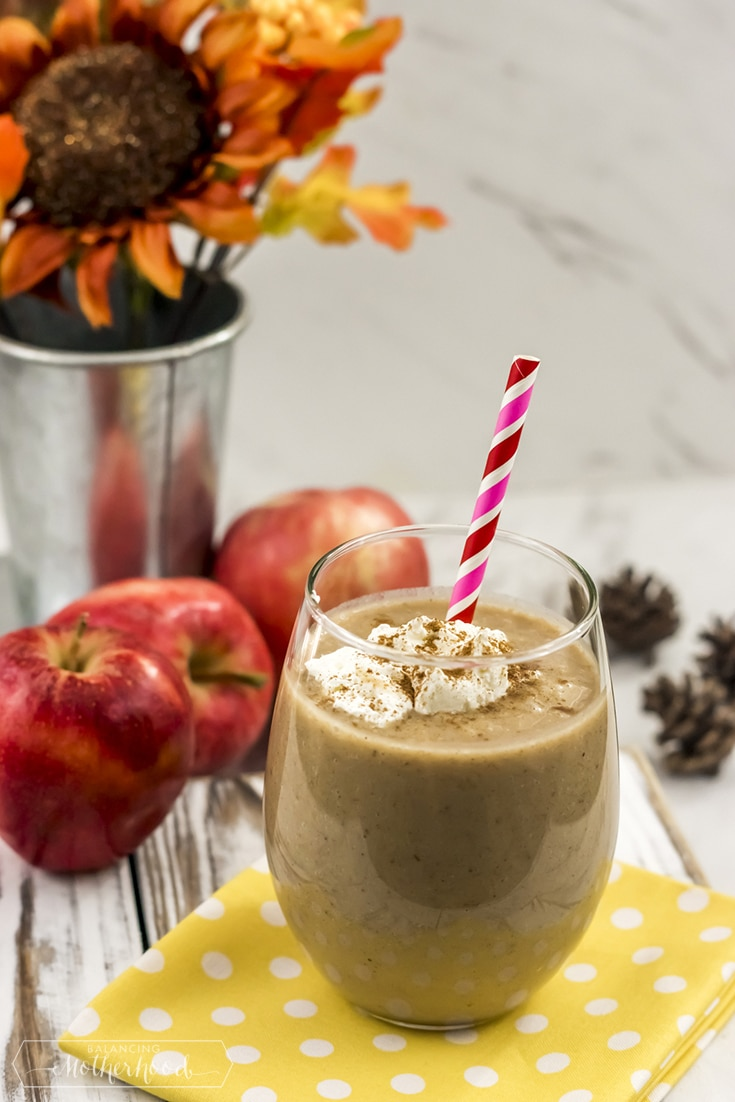 Paleo_Apple_Pie_Smoothie 3