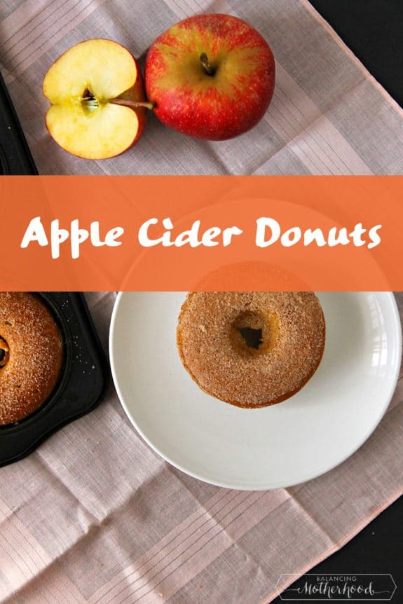 Apple cider donut recipe