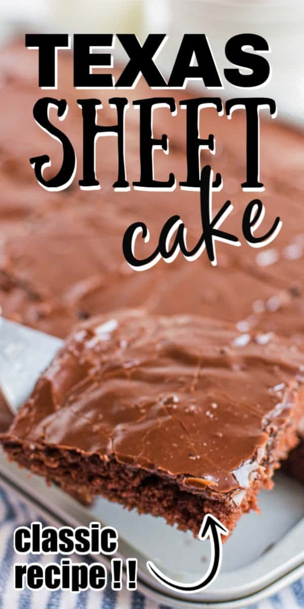 Our Texas Sheet Cake is super decadent and moist, ultra-rich chocolatey one pan dessert. It's the perfect dessert for any night, and it's the easiest potluck dessert you can find and takes like a million bucks!