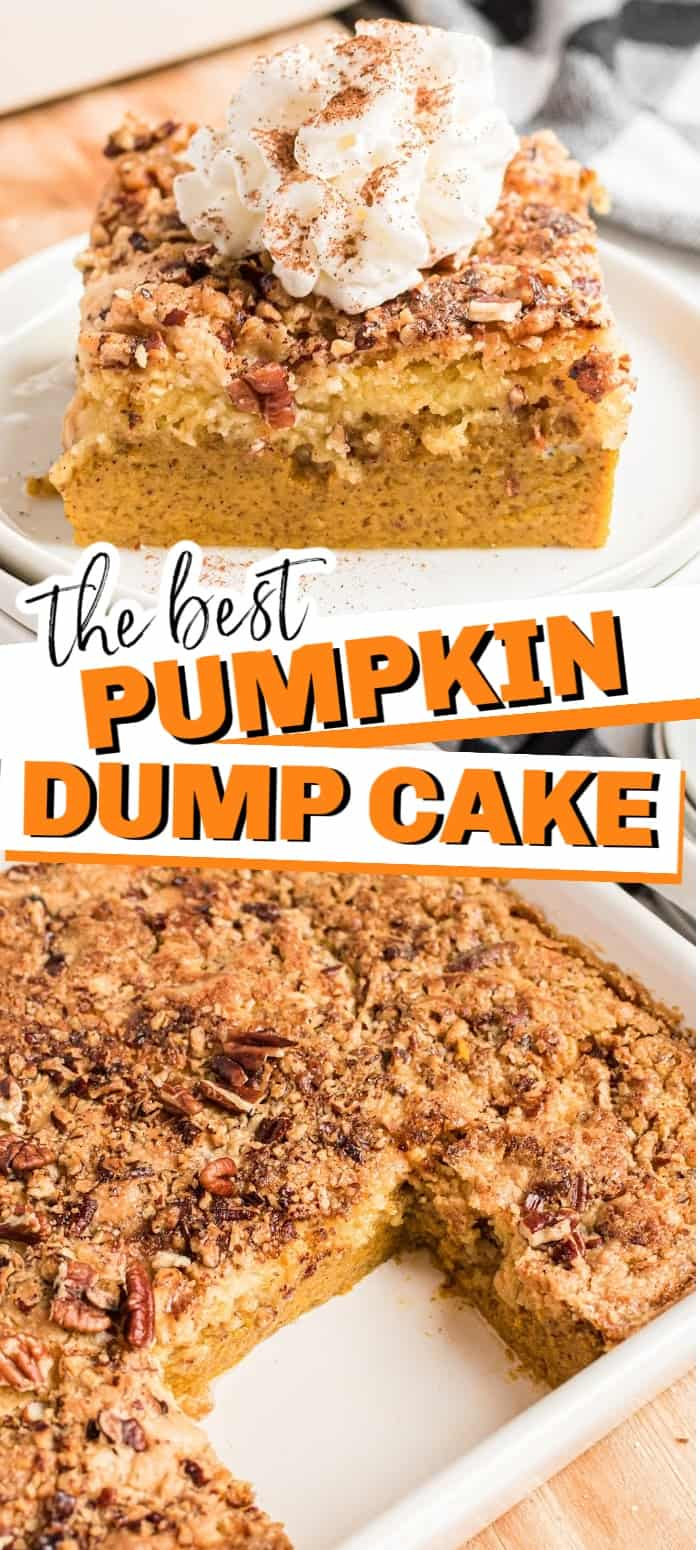 Pumpkin dump cake is an easy fall recipe that you just dump and bake. The bottom layer is a perfect, creamy pumpkin pie topped with a buttery pecan cake layer. #falldessert #pumpkin #dumpcake #easydessert #pumpkinspice