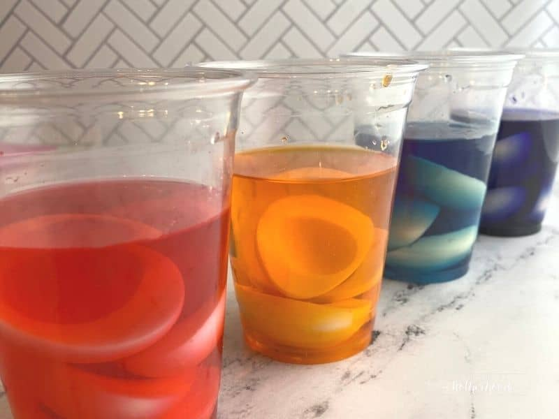 four plastic cups with colored water and egg whites in them: red, orange, blue, purple